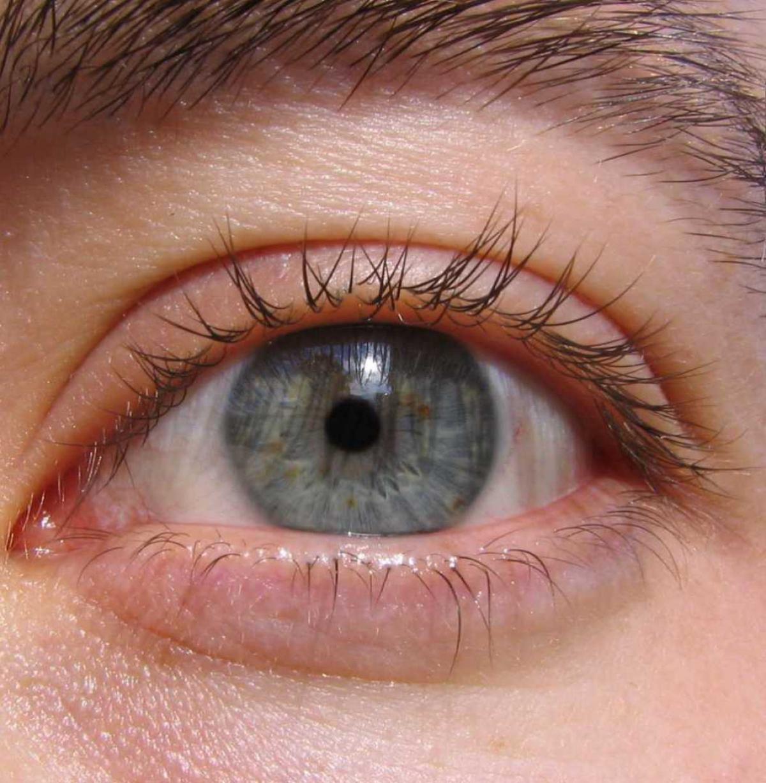 Βλέφαρα